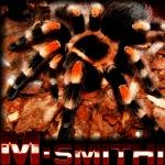 m-smithi