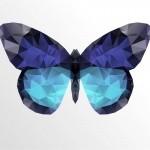 effet-papillon2