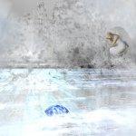 Avatar de océane843