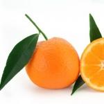 mandarine35