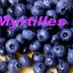 myrtille2011