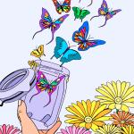 butterfly83