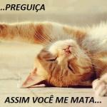 fugidinha-lo8