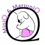 miniq-et-marsupio