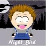 night_bird
