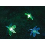 Avatar de lucioless