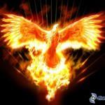 phoenix1973