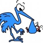 9 semaines de grossesse et sympt mes en baisse fc - 9 semaines de grossesse risque de fausse couche ...