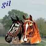 gil616