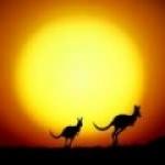 kangou1503
