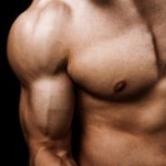 musculation-amateur