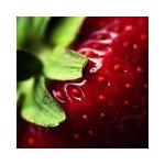 Avatar de petite fraise