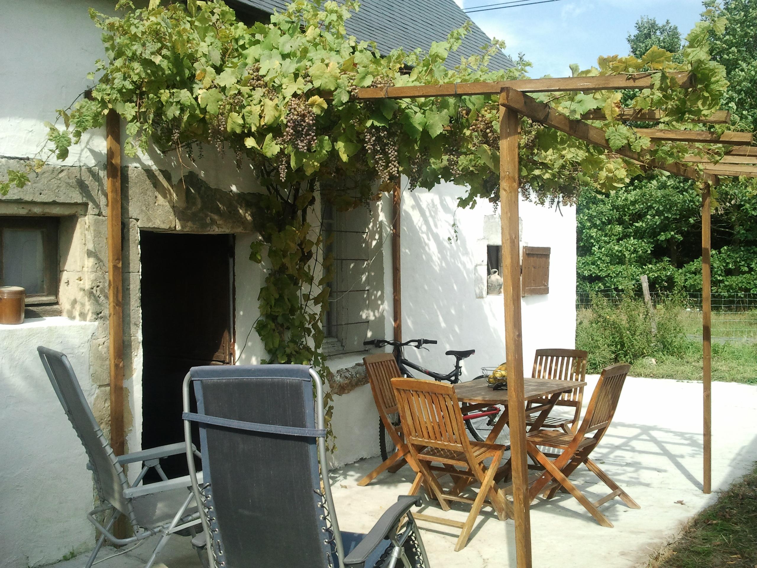 Terrasse Vigne Vierge : pergola fait de mes mains avec vigne vierge D maison de