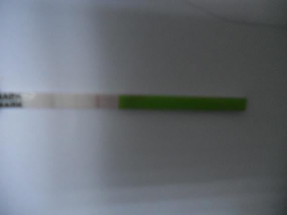 test ovulation 004