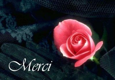 mercinv7