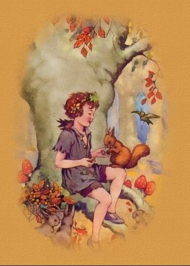 automne + écureuil