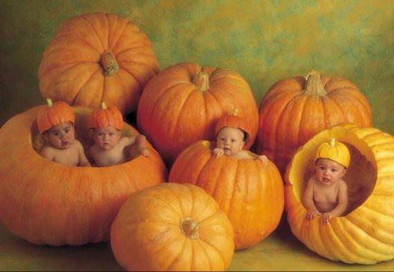 anne gedes bébés dans citrouilles