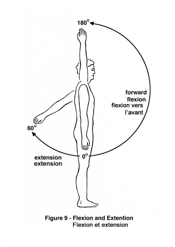 shoulder range of motion test pdf