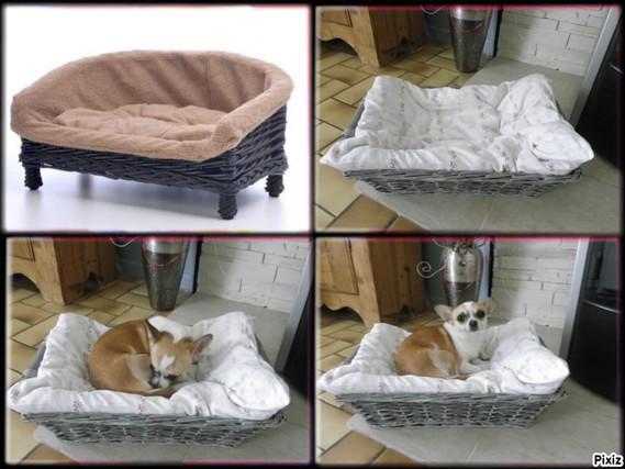 panier fait maison chiens forum animaux. Black Bedroom Furniture Sets. Home Design Ideas