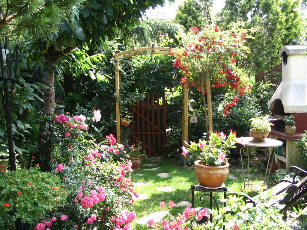 mon petit bout de jardin - popiette - Popiette7748 ...