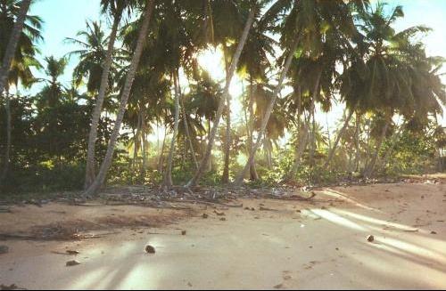 Playa Colorada 2
