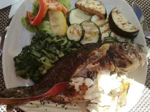 Trogir konoba idro daurade grillé