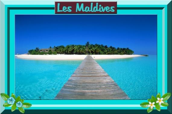 Nom de table : Les Maldives