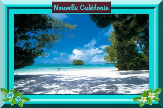 Nom de table : Nouvelle-Calédonie