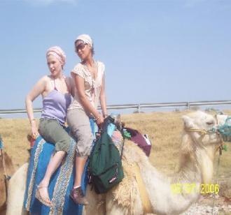 chameaux3