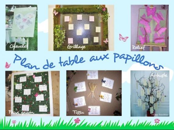 theme_papillons_plan_detable_grillage_chevalet_arbustebis