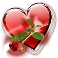 Coeur + rose