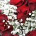bouquet-rouge-blanc-1