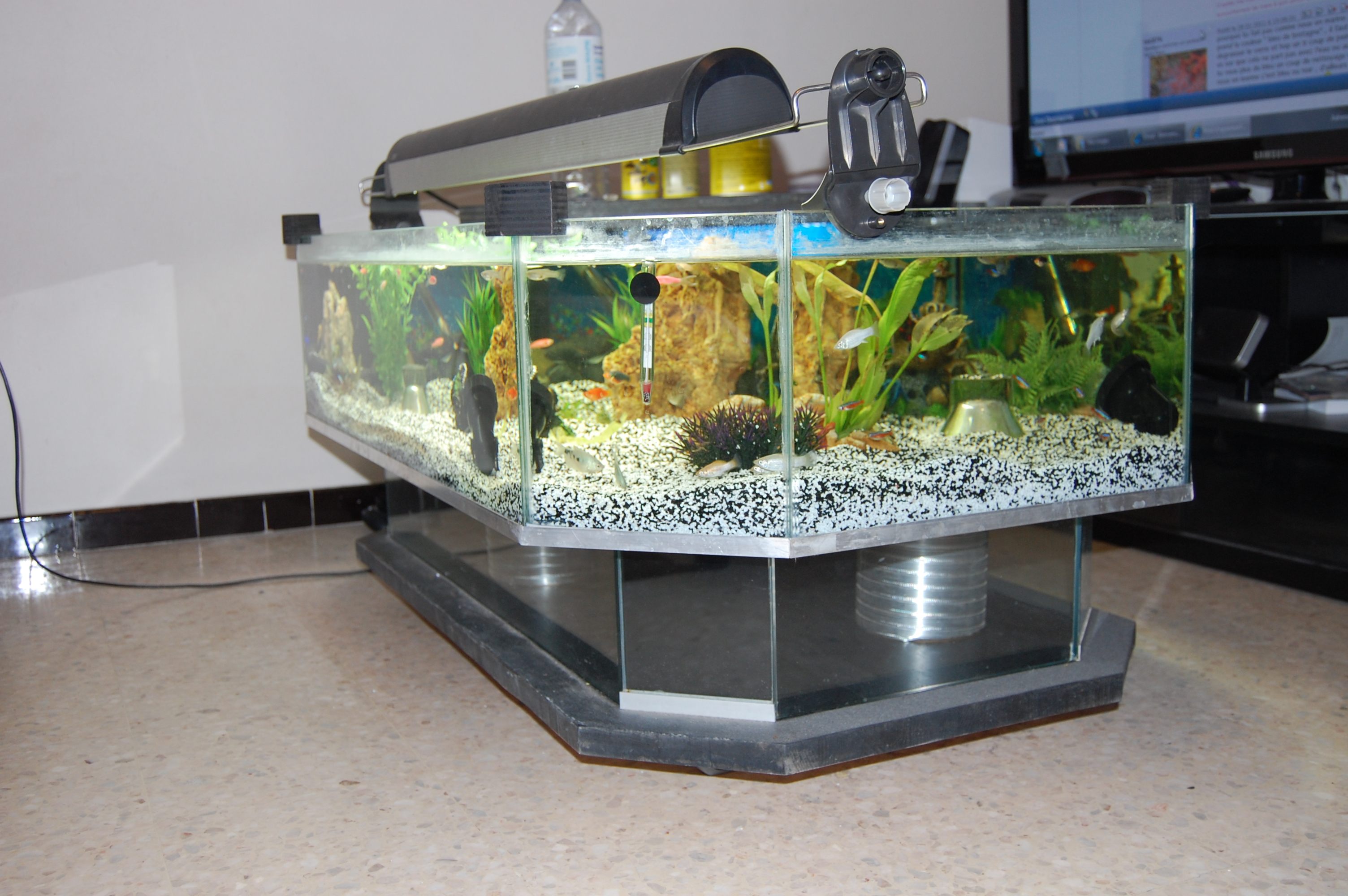 Dsc 0017 table basse aquarium fait maison lol lynka83 - Table basse faite maison ...