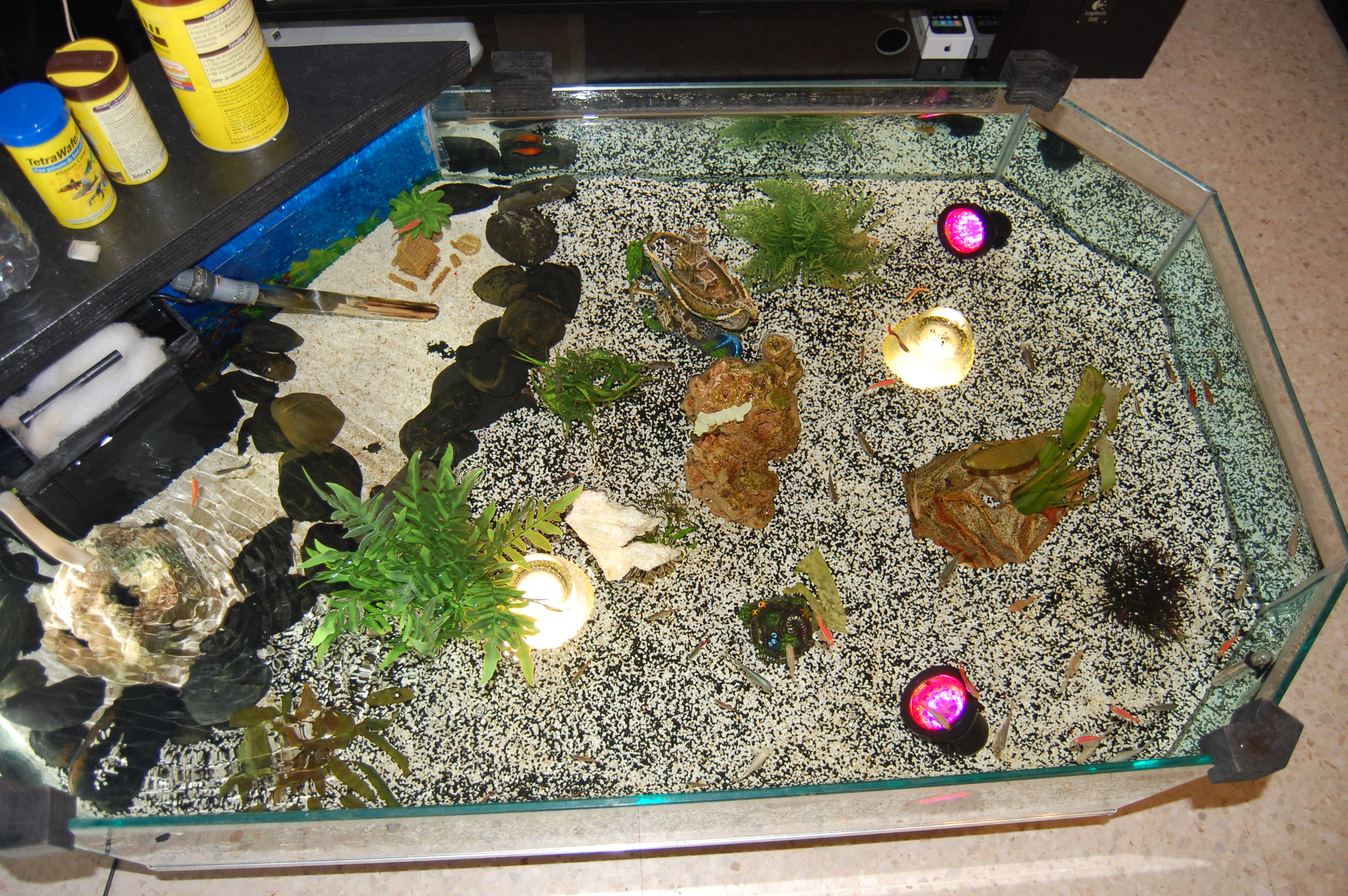 Dsc 0039 table basse aquarium fait maison lol lynka83 for Table fait maison