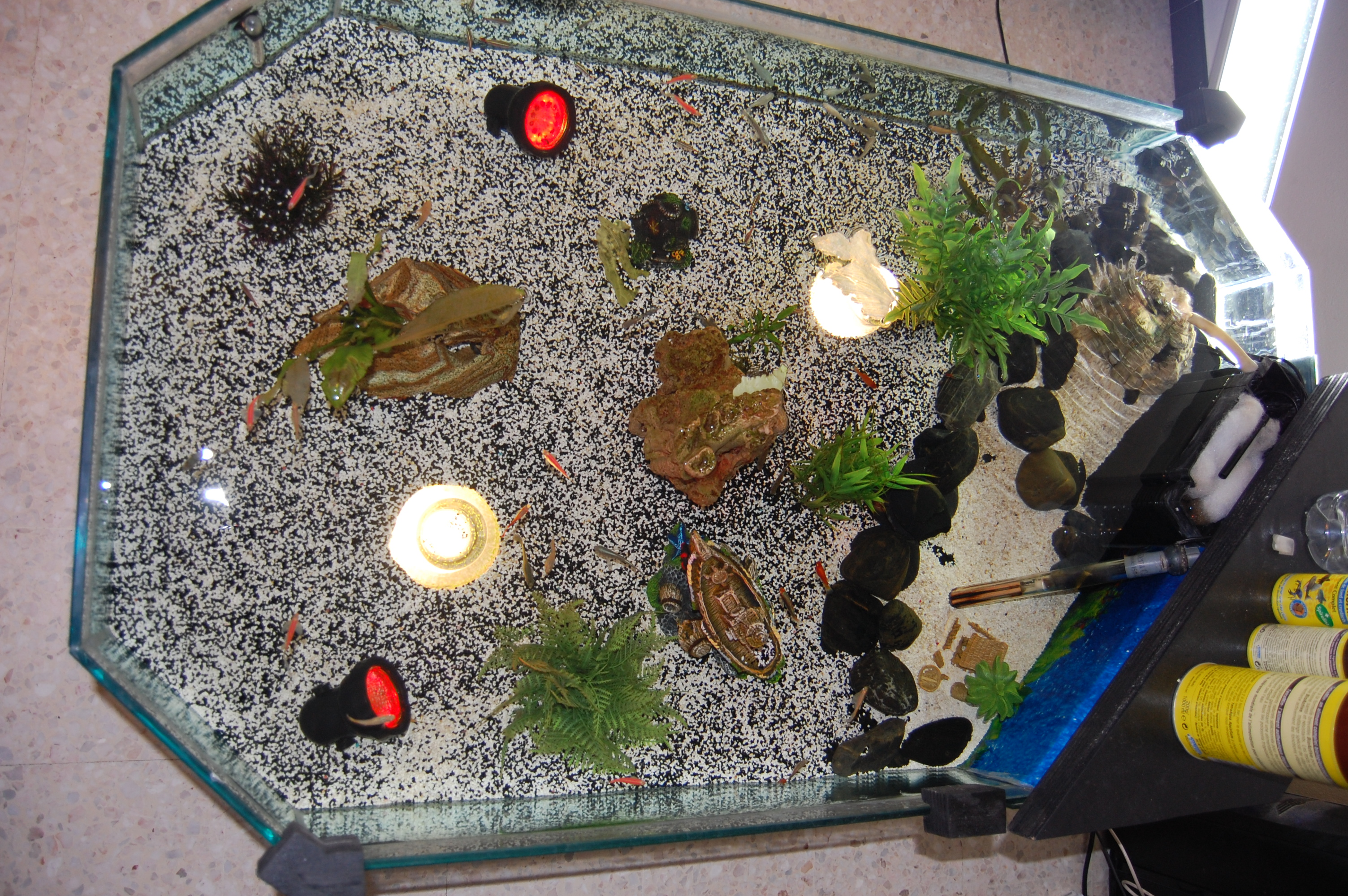 Table basse aquarium fait maison for Table basse fait maison
