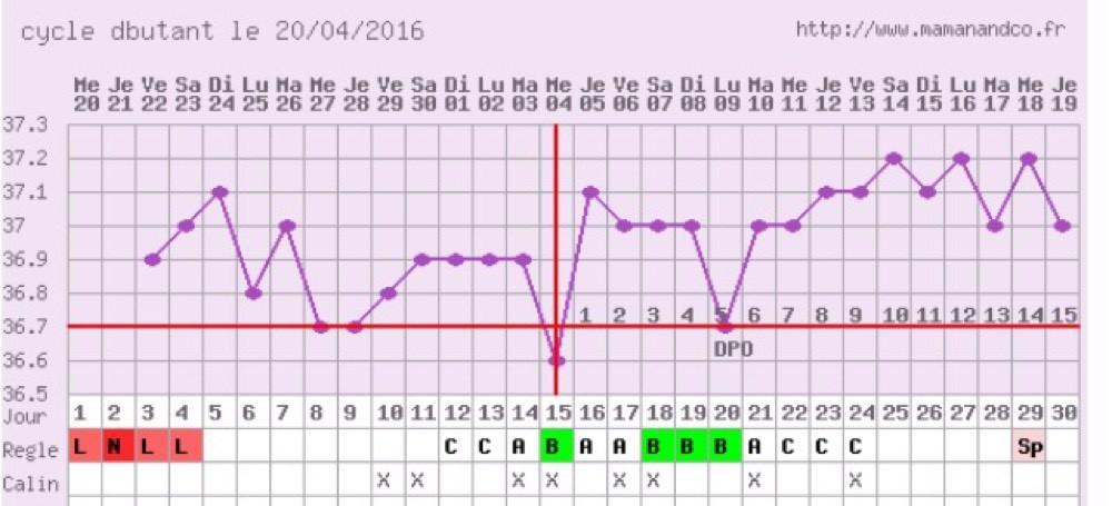 Votre avis sur ma date d'ovulation ? - Ovulation - FORUM