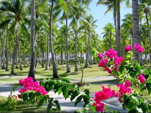 beaches_50.jpg3.