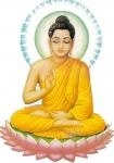 paix zen
