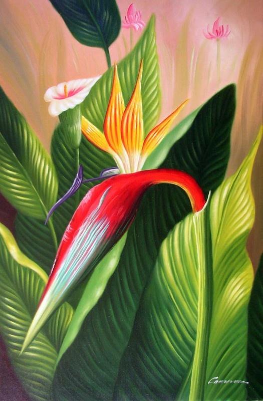 fleur canaris