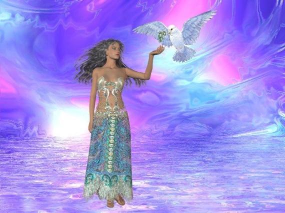 Bon Mardi Coeur-vie-aa8-colombe-paix-img