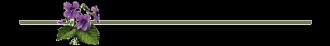 barreviolette