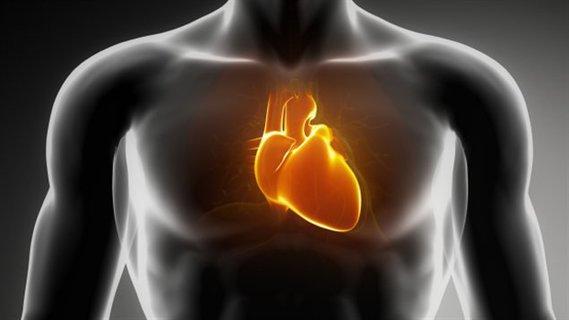 Coeur qui bat