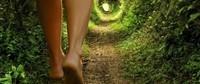 un voyage à travers la méditation guidée