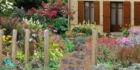 jardin anglais de cottage