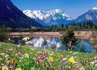 Vallée fleurie