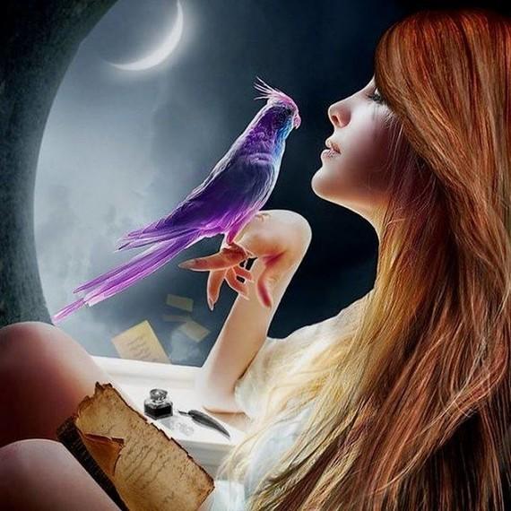 La belle et l'oiseau