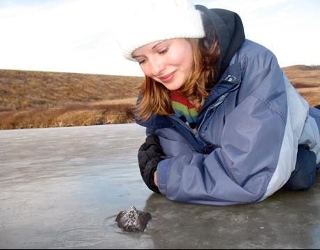 Ellen_Milley_meteorite_2