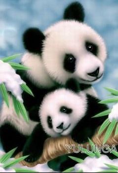 162208_366614937_pandas-calins_H051115_L