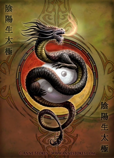 dragons-belles-stokes-1df1fec5-img