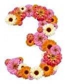 trois (14)
